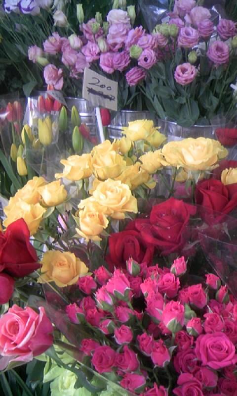 100205_085329お花屋さん