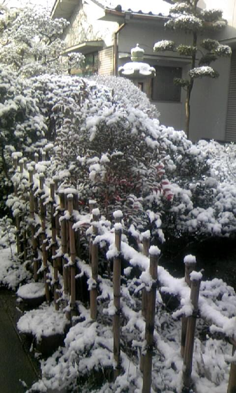 100206_082839雪景色