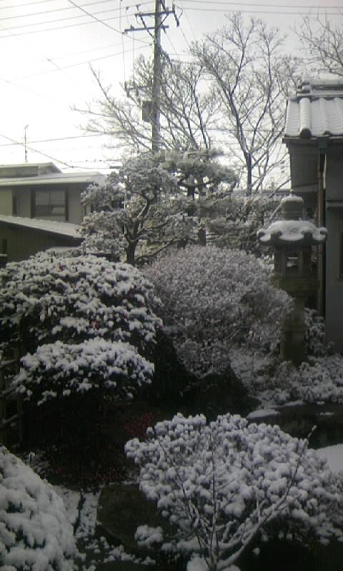 100206_083004雪景色