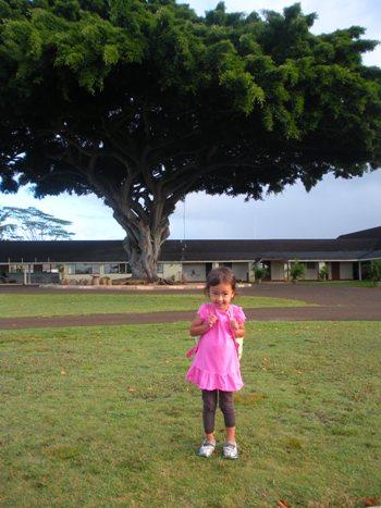 school-1.jpg