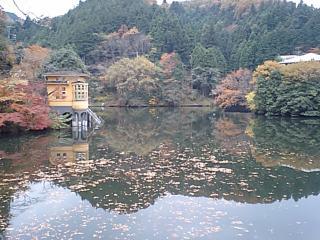 20091124鎌北湖1.JPG