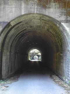 20091202養老渓谷林道2.JPG