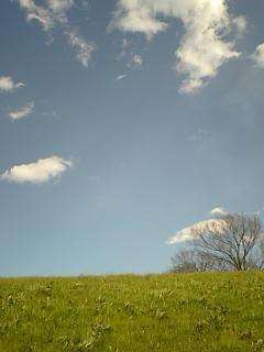 20091219埼玉の空2幸せの青.JPG
