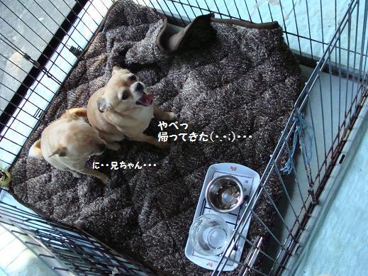 002yabe.jpg