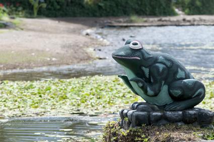 寺のカエル
