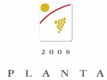 planta-big.jpg