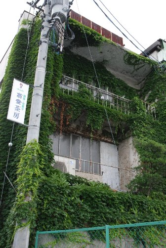 ⑰蔦の絡まる喫茶店