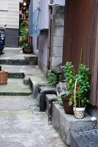 2010ほおづきの路地