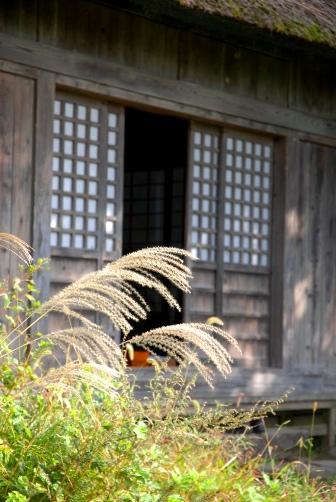 2010阿弥陀堂とススキ