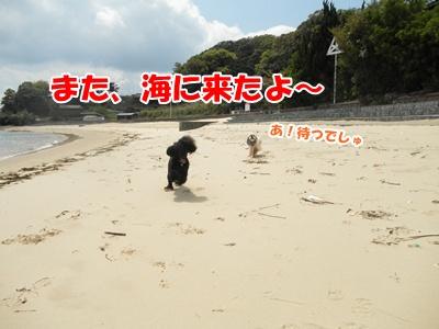 001_20110424230606.jpg
