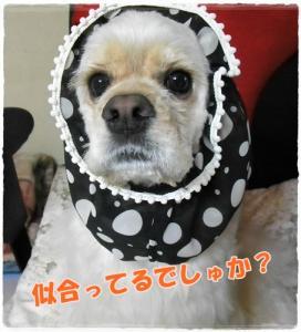 001_20110522201603.jpg