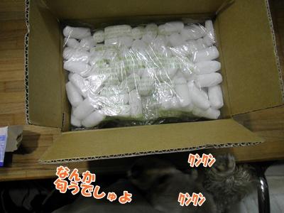 002_20110821214254.jpg