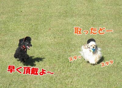 002_20110913230616.jpg