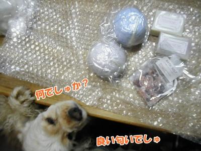 004_20110821214253.jpg
