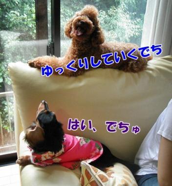 005_20110920212815.jpg