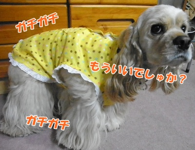 006_20110720222057.jpg