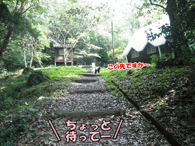 006_20110807145818.jpg