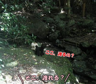 007_20110807145818.jpg