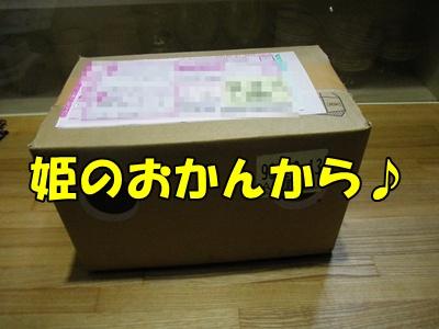009_20110326110329.jpg