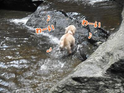 010_20110816181240.jpg