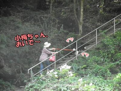 011_20110817214831.jpg
