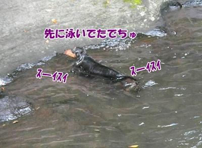 013_20110816181240.jpg