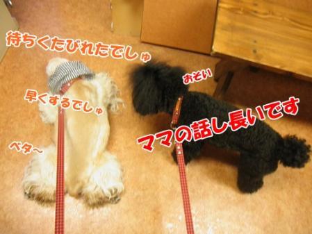 014_20110529211032.jpg