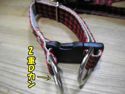 017_20110523073406.jpg