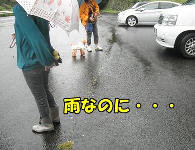 018_20110620140237.jpg