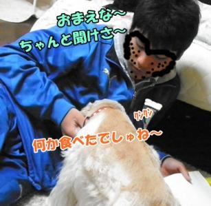 020_20110329214412.jpg