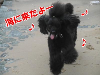024_20110704172240.jpg
