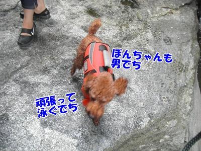 030_20110816181405.jpg