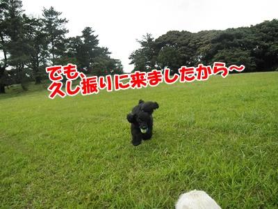 031_20110626192826.jpg