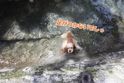 035_20110730174631.jpg