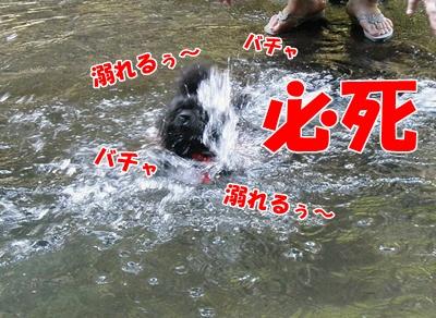035_20110816181458.jpg