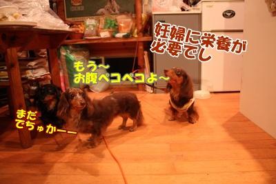 035_20110828185313.jpg