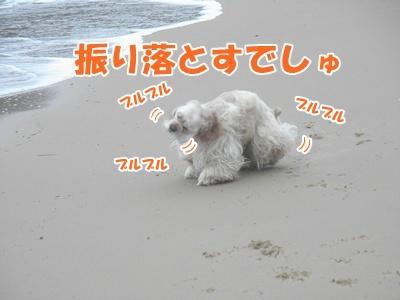 037_20110704172348.jpg