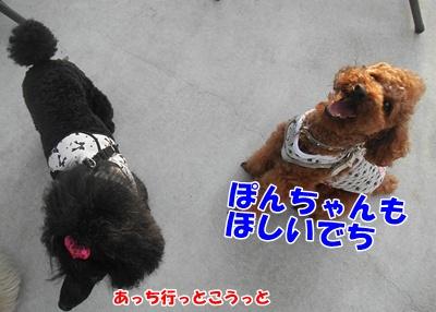 037_20110713222009.jpg