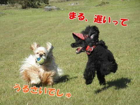 037_20110913230906.jpg
