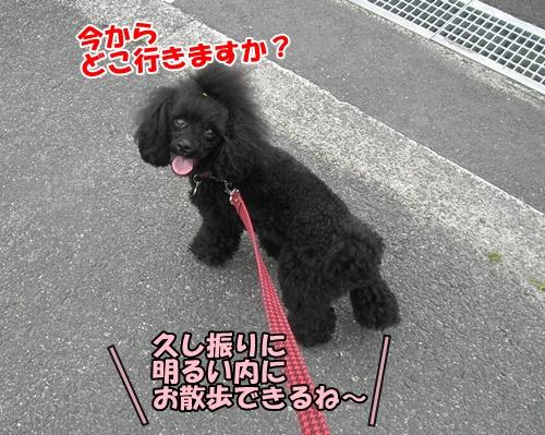 038_20110605234007.jpg