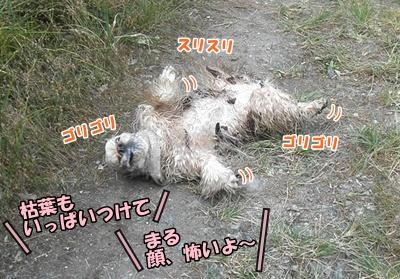039_20110807145944.jpg
