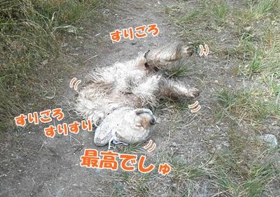 040_20110807150028.jpg