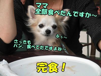 041_20110523220209.jpg