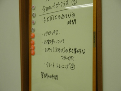 044_20110505175540.jpg