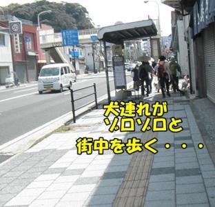 051_20110411215934.jpg