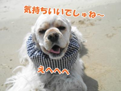 051_20110425205141.jpg