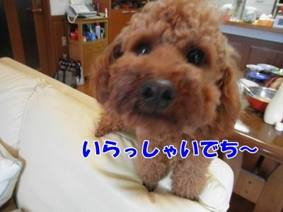 052_20110716215416.jpg