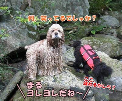 052_20110816214337.jpg