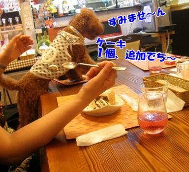 054_20110710213503.jpg