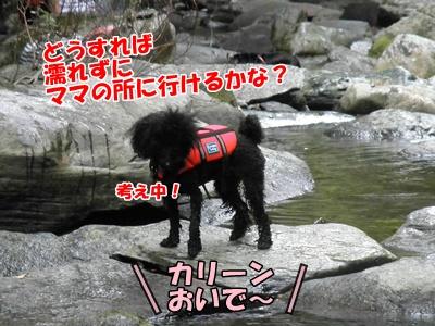 054_20110816214337.jpg